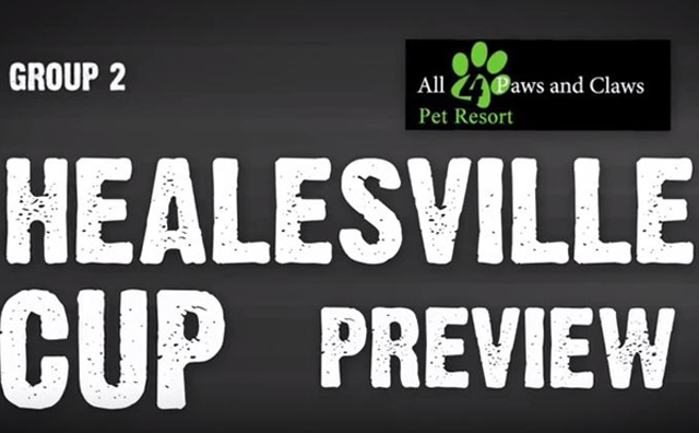 Healesville Cup preview640