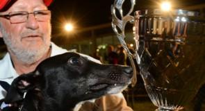 Spirited Greyhound Chasing Epic Payday