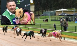 Local hopes rest with Haiyan in Healesville Cup