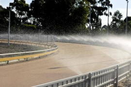 Hot weather alert: Australia Day meeting transferred