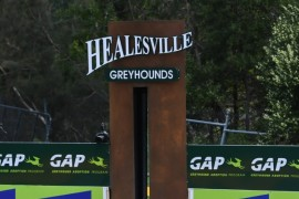 Scheduled Track Maintenance – Healesville