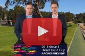2018 Group 3 Healesville Cup Preview