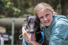Healesville Greyhounds Racing into 2019