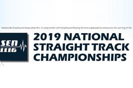 Straight racing set for national spotlight