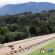 Inaugural National Straight Track Championship