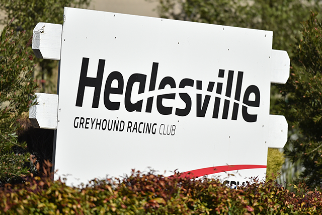 000 healesville cup inside word