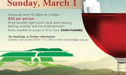 Healesville Wine & Race Day