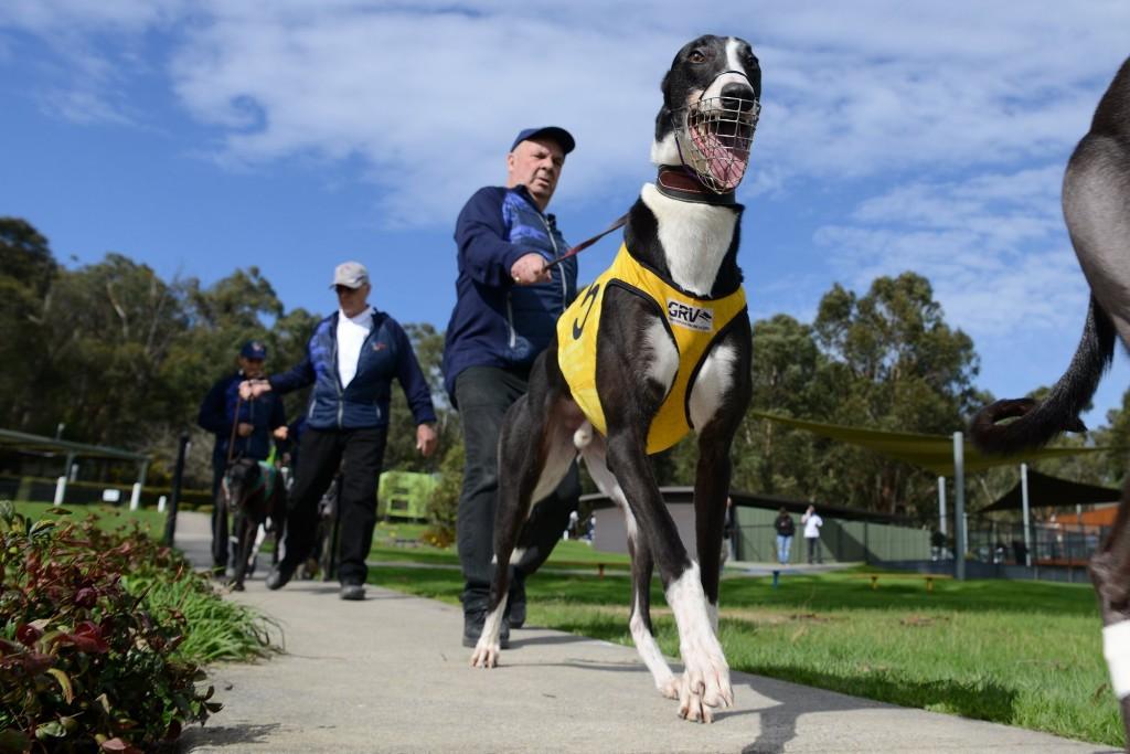 Heallesville_Greyhound Racing Association