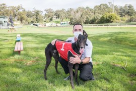 Tin Shed rattles Healesville Cup