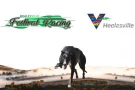 2021 Healesville Racing Festival