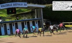 Racing update: National Straight Track Championship