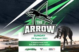 The Arrow – Final Field!