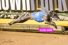 Jose set to 'Shine' at Healesville